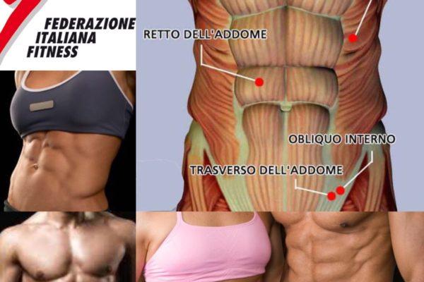 locandina tecniche di allenamento dei muscoli addominali